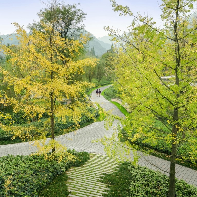 Qing-Cheng-Mountain-China-Pathway.jpg